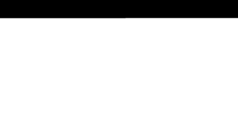 Logo Stripe