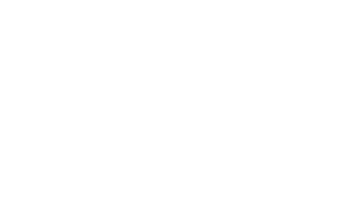 Logo Bonjour Maurice